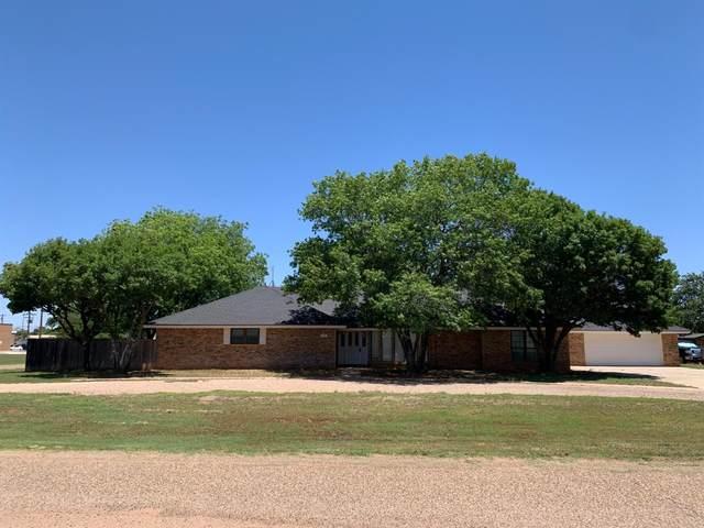 601 12th, Plains, TX 79355 (MLS #202105588) :: Rafter Cross Realty