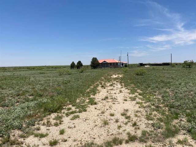 0 County Road 255, Plains, TX 79355 (MLS #202108708) :: Stacey Rogers Real Estate Group at Keller Williams Realty
