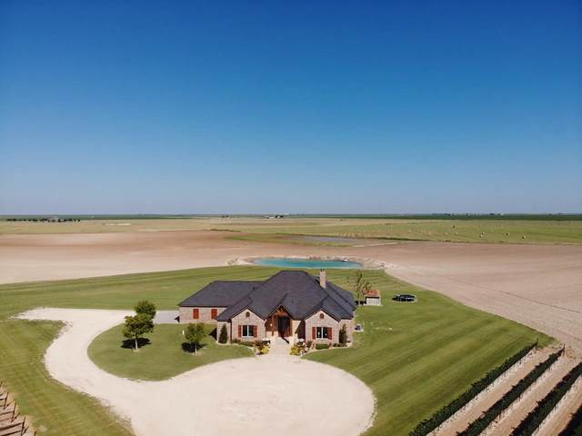 574 Farm Road 1317, New Home, TX 79373 (MLS #202108978) :: Stacey Rogers Real Estate Group at Keller Williams Realty