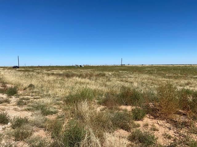 6 N County Road 2000 Circle, Lubbock, TX 79415 (MLS #202110188) :: McDougal Realtors
