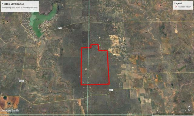 0 County Road 450, Spur, TX 79370 (MLS #201503332) :: The Lindsey Bartley Team