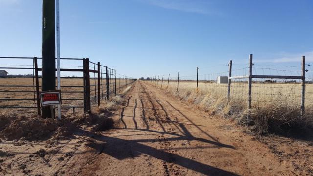 215 N Farm Road 2378, Shallowater, TX 79363 (MLS #201800308) :: Lyons Realty
