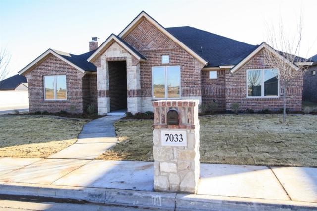 7033 99th Street, Lubbock, TX 79424 (MLS #201800422) :: Lyons Realty