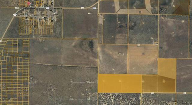 0 Farm Road 41, Near Bledsoe, TX 79314 (MLS #201804161) :: Lyons Realty