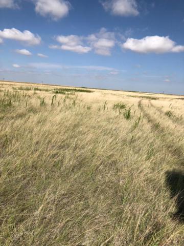 0-0 Sun Road, Plainview, TX 79072 (MLS #201805819) :: Lyons Realty