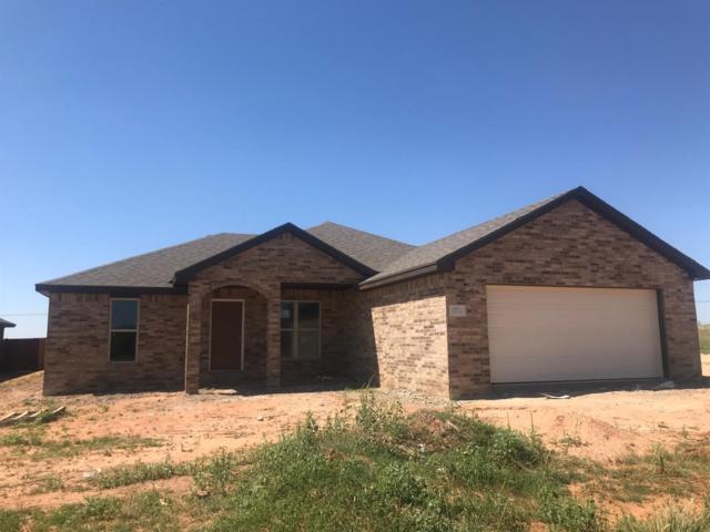 1007 Buffalo Court, Abernathy, TX 79311 (MLS #201807966) :: Lyons Realty