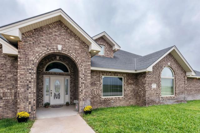 337 Farm Road 181, Seminole, TX 79360 (MLS #201808611) :: Reside in Lubbock | Keller Williams Realty