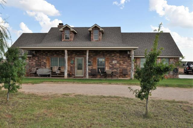 3830 SE County Road 3000, Andrews, TX 79714 (MLS #201808917) :: The Lindsey Bartley Team