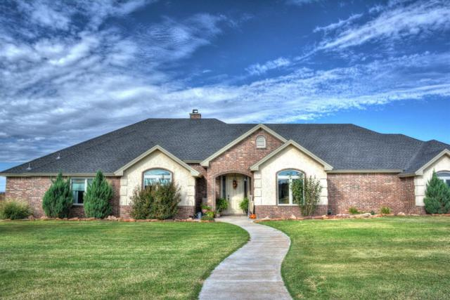 15610 County Road 1810, Lubbock, TX 79424 (MLS #201808951) :: The Lindsey Bartley Team