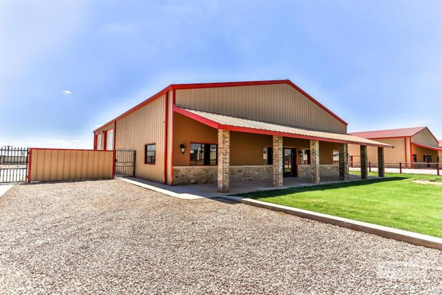 808 E County Road 7300, Lubbock, TX 79404 (MLS #201809132) :: The Lindsey Bartley Team