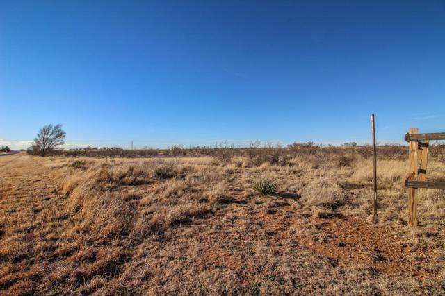 0 Farm Road 597, Abernathy, TX 79311 (MLS #201901130) :: Reside in Lubbock | Keller Williams Realty