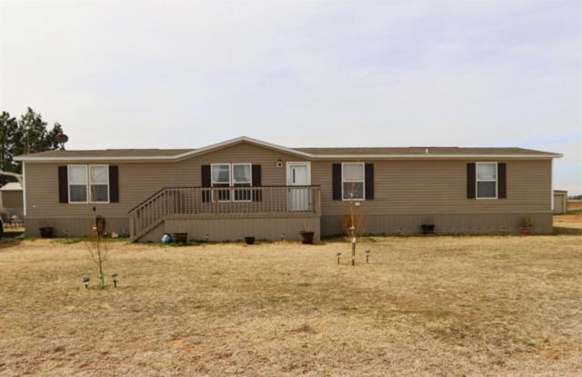 12714 County Road 1240, Wolfforth, TX 79382 (MLS #201901558) :: Lyons Realty