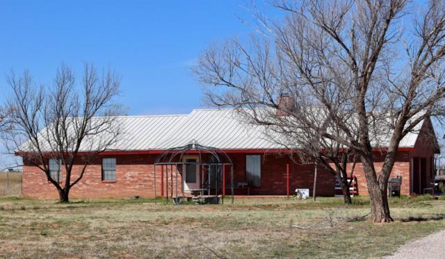 1712 Lovebird Road, Smyer, TX 79367 (MLS #201902840) :: Lyons Realty
