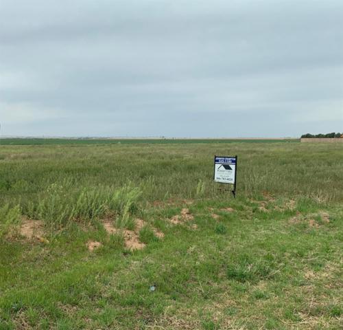 12801 N Farm Road 179, Shallowater, TX 79363 (MLS #201903088) :: Lyons Realty