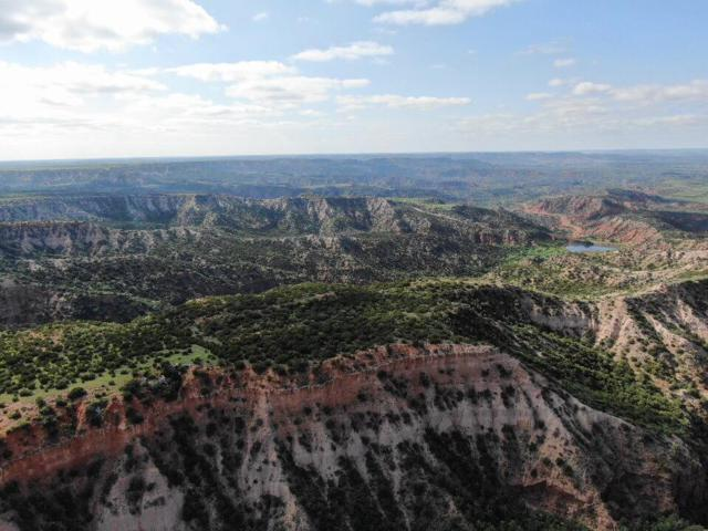 0 County Road R, Other, TX 79257 (MLS #201903969) :: Lyons Realty