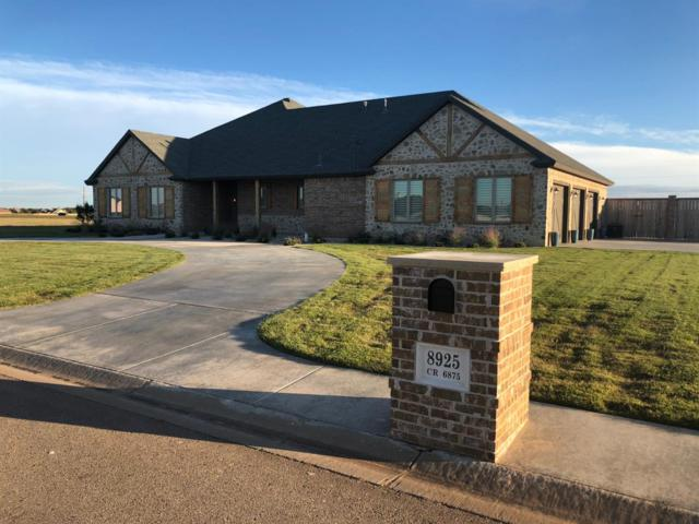 8925 County Road 6875, Lubbock, TX 79407 (MLS #201904463) :: McDougal Realtors