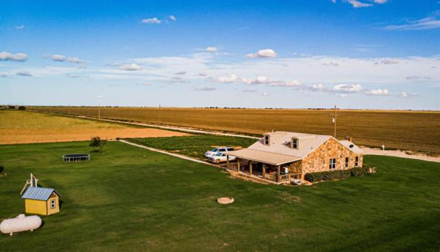 6908 County Road 5400, Lubbock, TX 79415 (MLS #201905190) :: McDougal Realtors