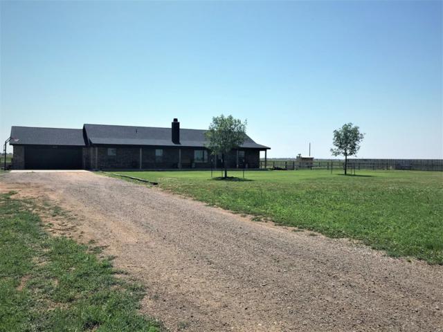 12218 N Farm Road 179, Shallowater, TX 79363 (MLS #201905867) :: Blu Realty