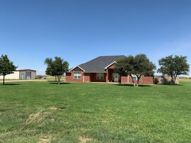 13710 N County Road 1400, Shallowater, TX 79363 (MLS #201906650) :: Lyons Realty