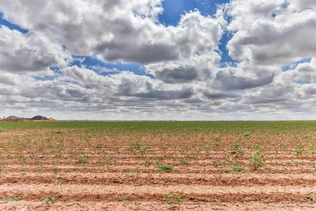 17211 Farm Road 1730, Lubbock, TX 79424 (MLS #201906947) :: The Lindsey Bartley Team