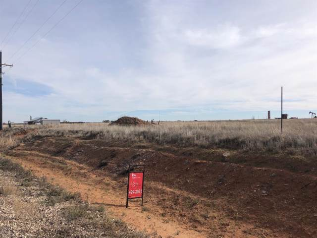 6910 Colorado Road, Shallowater, TX 79363 (MLS #201910461) :: The Lindsey Bartley Team
