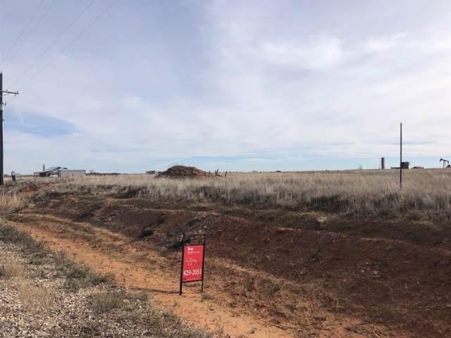 6910 Colorado Road, Shallowater, TX 79363 (MLS #201910461) :: Lyons Realty