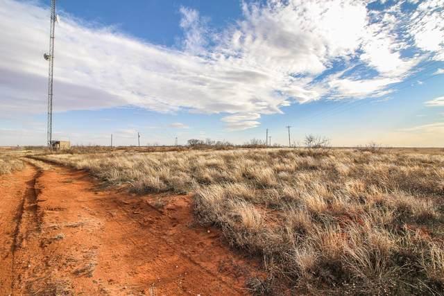 0 County Road 121, Brownfield, TX  (MLS #202001032) :: McDougal Realtors