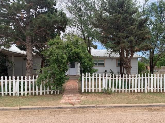 1402 E 5th, Petersburg, TX 79250 (MLS #202004046) :: Lyons Realty