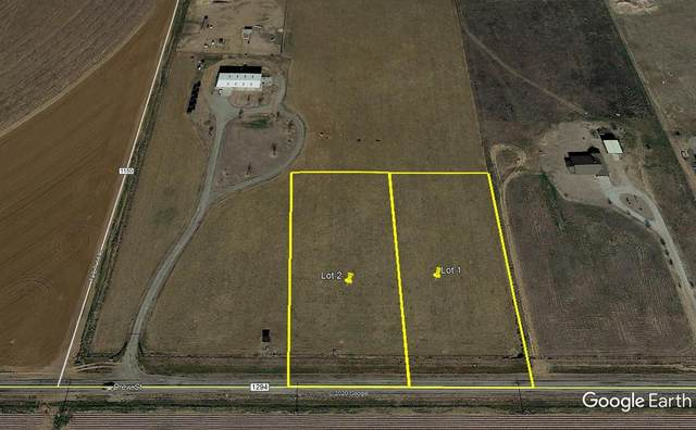 2 Farm Road 1294, Shallowater, TX 79363 (MLS #202004547) :: The Lindsey Bartley Team