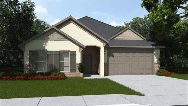 2303 104th, Lubbock, TX 79423 (MLS #202005539) :: McDougal Realtors