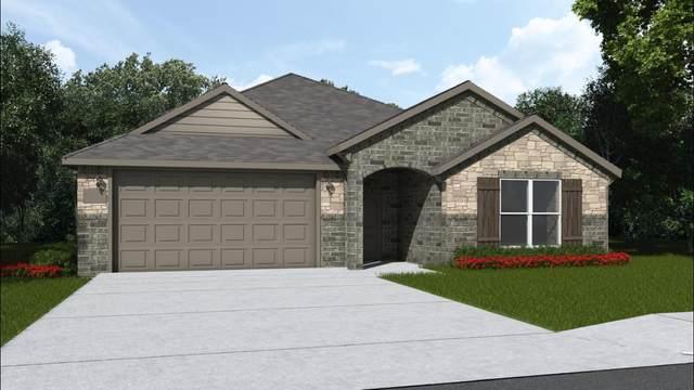2304 104th, Lubbock, TX 79423 (MLS #202005540) :: McDougal Realtors