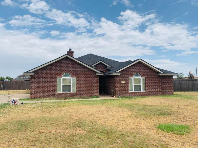 3004 County Road 7530, Lubbock, TX 79423 (MLS #202006475) :: Reside in Lubbock | Keller Williams Realty
