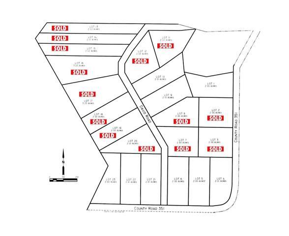 1 E County Road 351 Drive, Lake Alan Henry, TX 79330 (MLS #202007318) :: Rafter Cross Realty