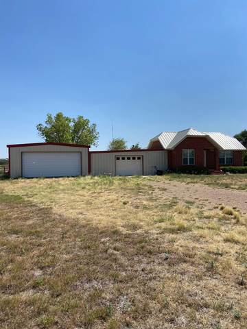 11711 County Road 7000, Wolfforth, TX 79382 (MLS #202007791) :: McDougal Realtors