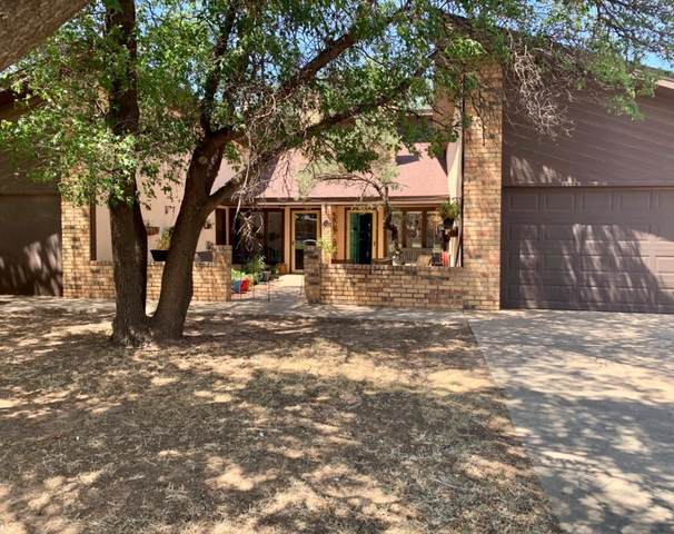 119 Magnolia Street, Levelland, TX 79336 (MLS #202008295) :: Duncan Realty Group