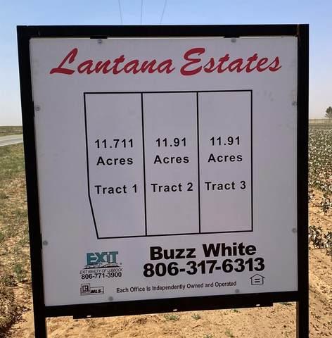 0 E Farm Road 41, Ropesville, TX 79358 (MLS #202009569) :: Reside in Lubbock | Keller Williams Realty