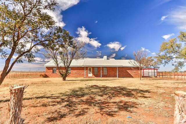 1712 Lovebird Road, Smyer, TX 79367 (MLS #202010290) :: Stacey Rogers Real Estate Group at Keller Williams Realty