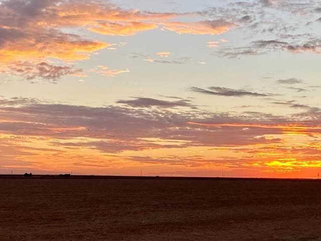 950 Farm Road 1317, Tahoka, TX 79383 (MLS #202100300) :: Lyons Realty