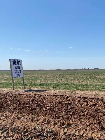0-Tract 9 County Road 7500, Lubbock, TX 79424 (MLS #202101991) :: McDougal Realtors