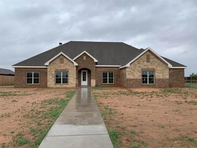 9017 County Road 6875, Lubbock, TX 79407 (MLS #202104274) :: McDougal Realtors