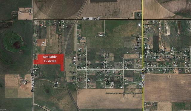 1510 N County Road 1300, Lubbock, TX 79416 (MLS #201506325) :: Lyons Realty