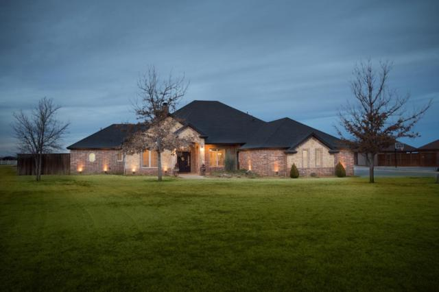 3208 County Road 7610, Lubbock, TX 79423 (MLS #201800150) :: Lyons Realty