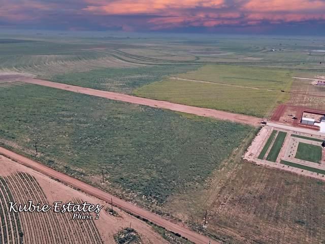 4176 Luke Street, Ropesville, TX 79358 (MLS #202108002) :: Better Homes and Gardens Real Estate Blu Realty