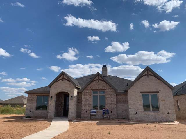 3705 117th Street, Lubbock, TX 79423 (MLS #201903988) :: Lyons Realty
