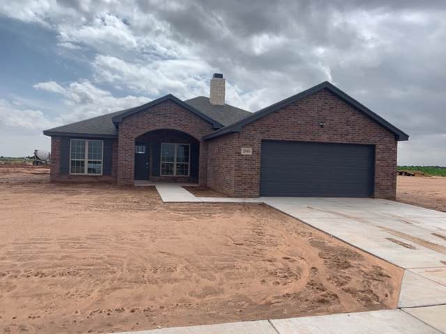 2919 137th, Lubbock, TX 79423 (MLS #201907329) :: The Lindsey Bartley Team