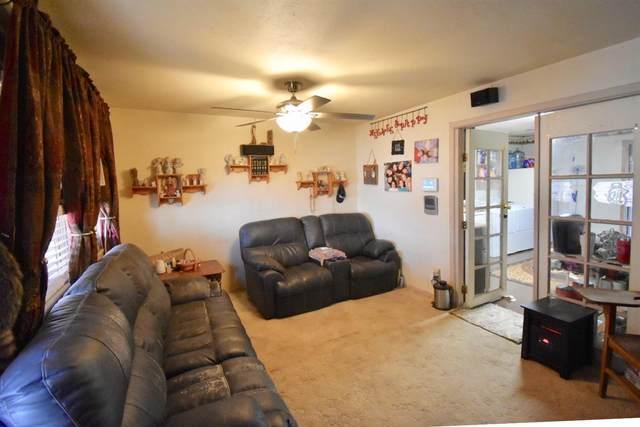 717 E Park Lane, Brownfield, TX 79316 (MLS #202010819) :: Lyons Realty