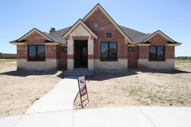 9503 Private Road 6660, Lubbock, TX 79416 (MLS #201805736) :: McDougal Realtors
