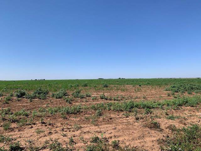 0-Lot 2 County Road 2, New Home, TX 79381 (MLS #202107185) :: Duncan Realty Group