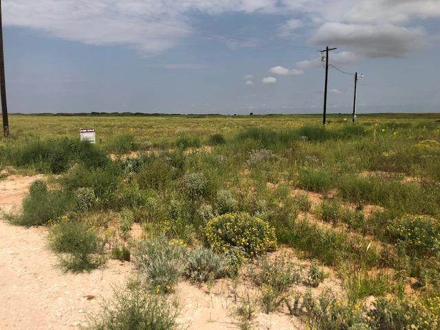 0 Seagraves Highway Old - Photo 1