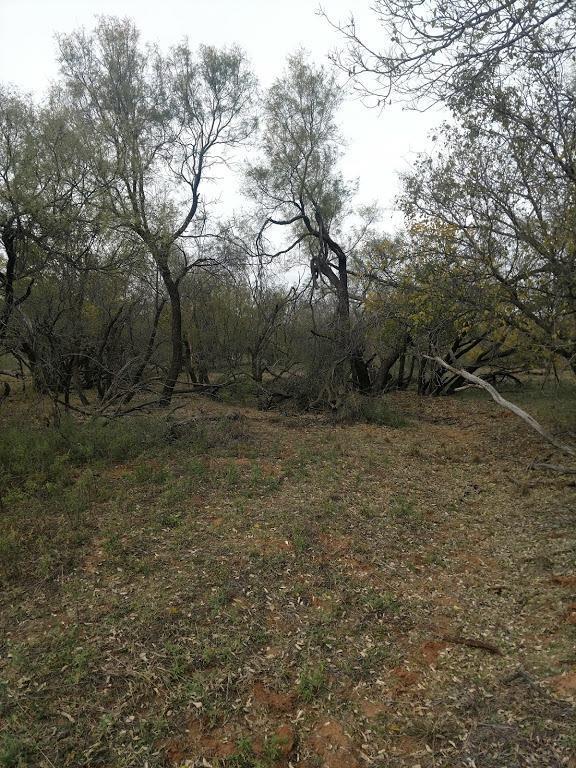 356 S Farm Road 193, Dickens, TX 79428 (MLS #201802879) :: Lyons Realty